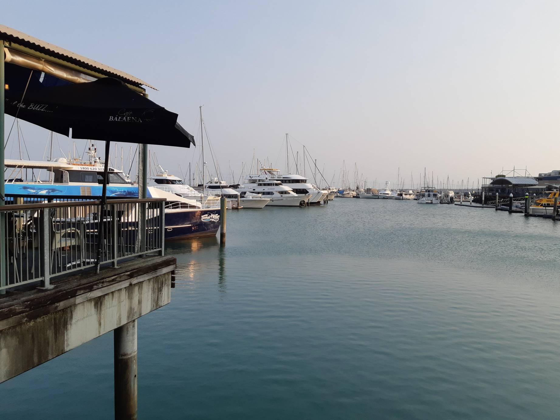 harvey bay marina council