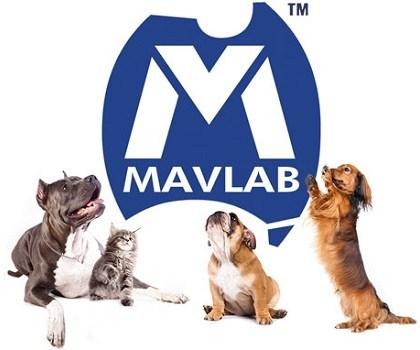 mavlab